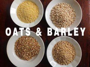 oats & barley