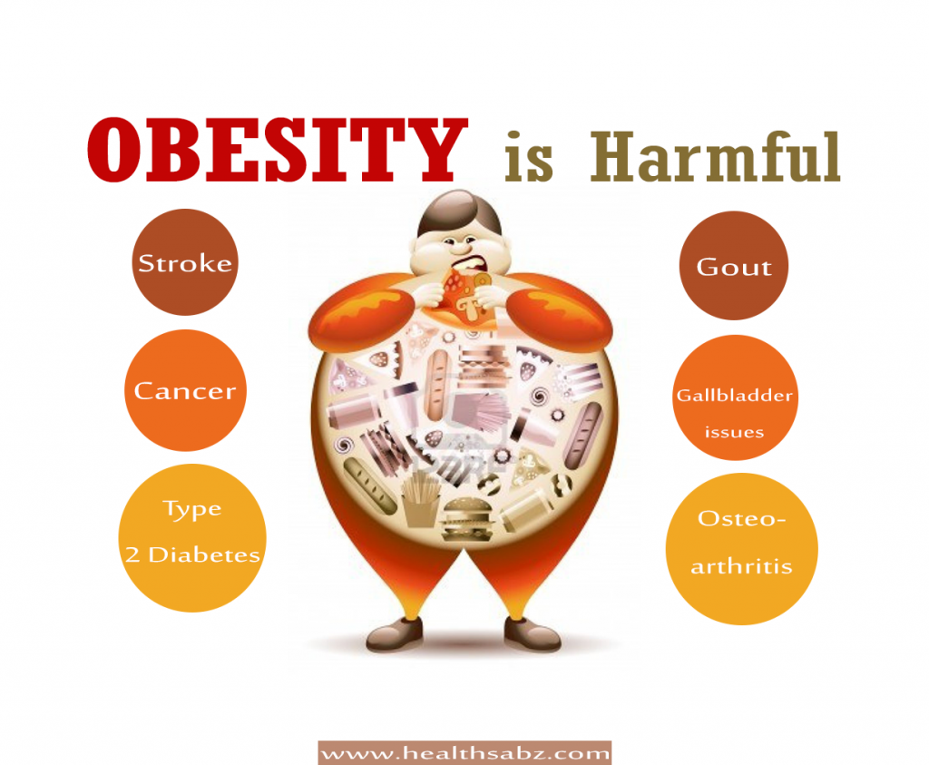 Obesity  >> Obesity Is Harmful For You Why Avoid It Health Sabz