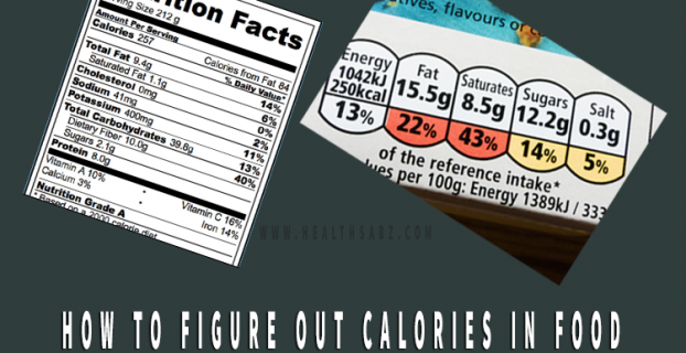how to figure out calories in food